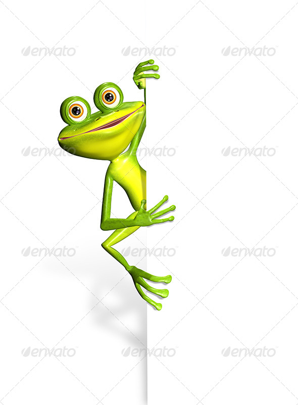 Frog and white background - Characters 3D Renders