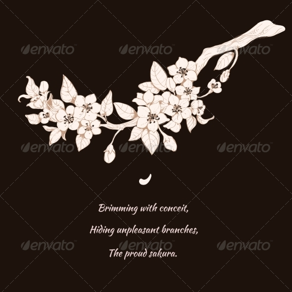 Sakura Cherry on Black Background - Decorative Symbols Decorative