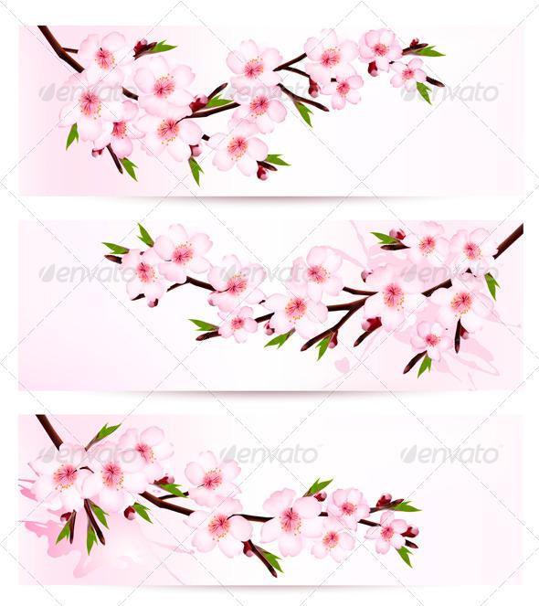 Three Sakura Branch Banners - Flowers & Plants Nature