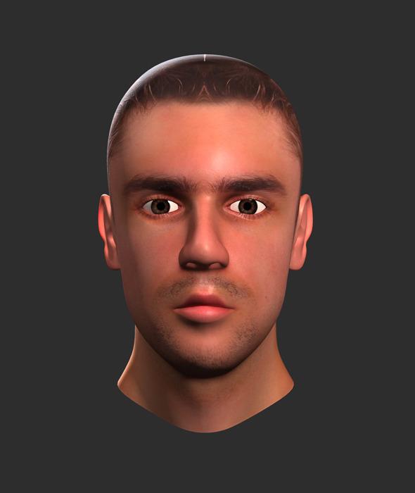Human Male Head  - 3DOcean Item for Sale