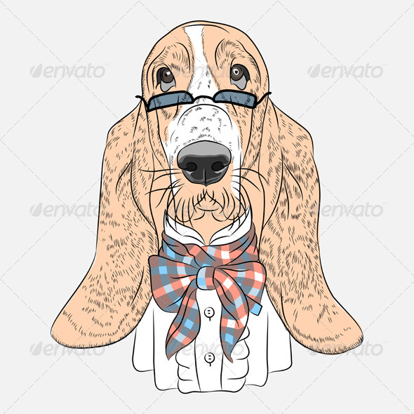 Vector Funny Cartoon Hipster Dog Basset Hound - Animals Characters