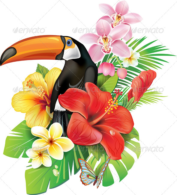 Tropical Flowers and Toucan - Flowers & Plants Nature