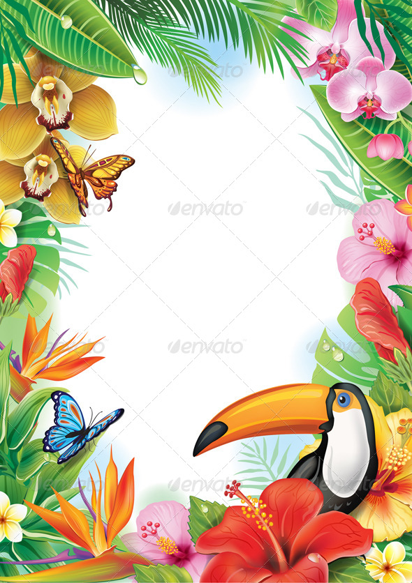 Frame with Tropical Flowers and Toucan  - Flowers & Plants Nature