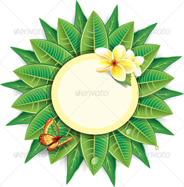 Round Frame Made from Leaves - Flowers & Plants Nature