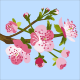 Cherry Blossom - GraphicRiver Item for Sale
