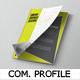 Professional Company Profile Template - GraphicRiver Item for Sale