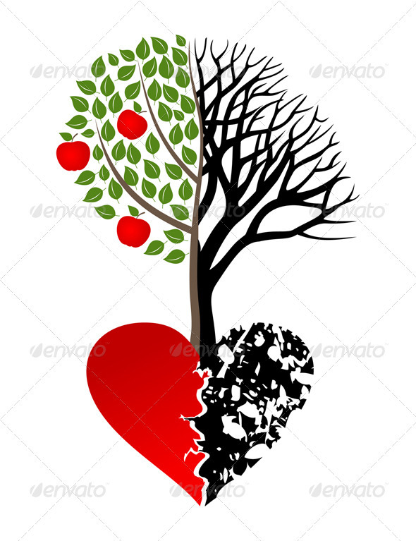 Broken heart - Flowers & Plants Nature