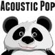 Acoustic Guitar & Strings