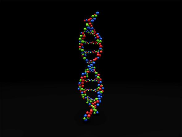 Dna Molecule Structure By Shaazstock 3docean