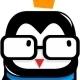 Hipster Penguin Logo - GraphicRiver Item for Sale