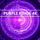 Purple Rings Abstract Backgrounds - VideoHive Item for Sale