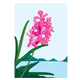 Pink orchids - GraphicRiver Item for Sale