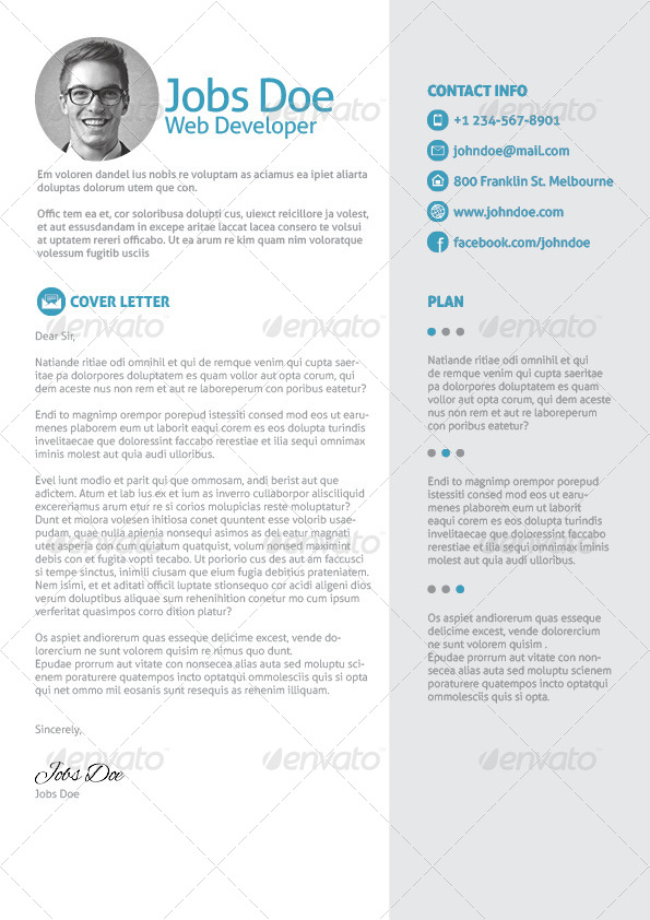 3 page resume   cv with letter by dreamwork