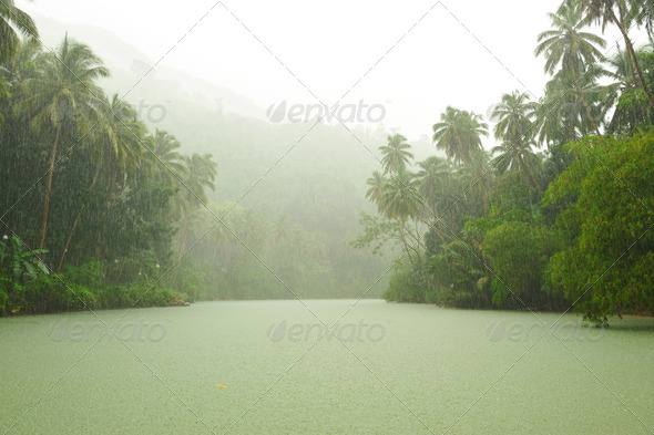 Tropical rain above river - Stock Photo - Images