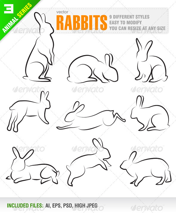 Rabbits - Animals Characters
