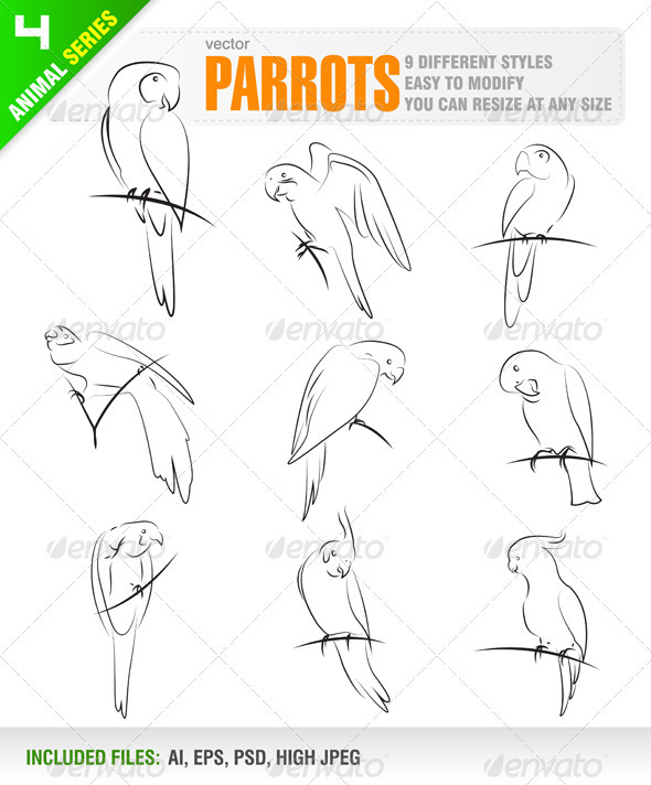 Parrots - Animals Characters