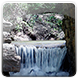 Spring Forest Dam 2 - VideoHive Item for Sale