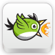 Green Bird Game Character