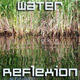 Grass Reflexion in Pond - VideoHive Item for Sale