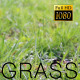 The Green Grass 4 - VideoHive Item for Sale