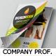 Propfessional Corporate Company Profile Template - GraphicRiver Item for Sale