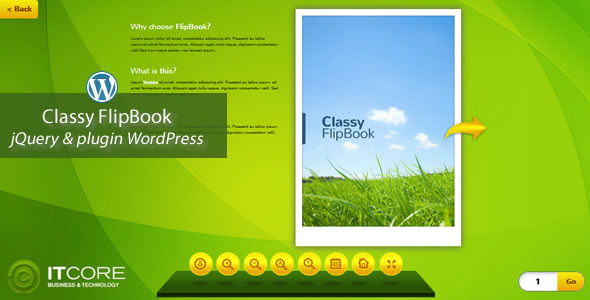Classy FlipBook Responsive WordPress Plugin - Screenshot 1