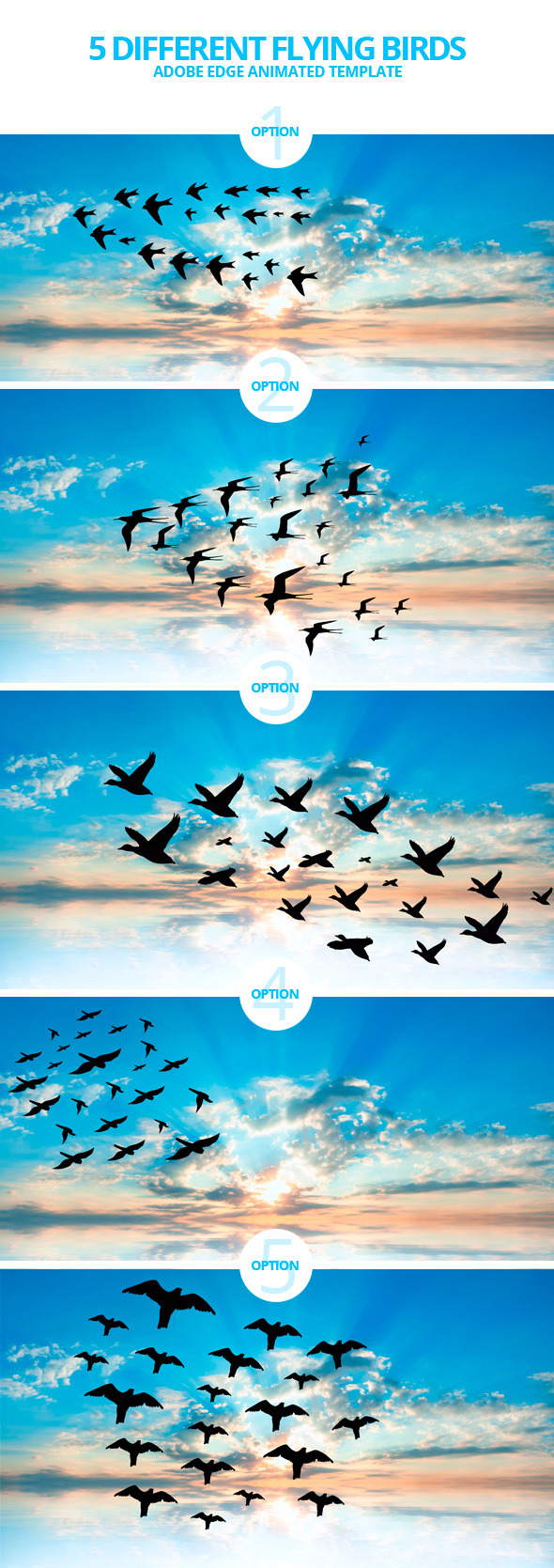 Edge Animate Flying Birds Template - CodeCanyon Item for Sale