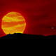 Sunset In Flames - VideoHive Item for Sale
