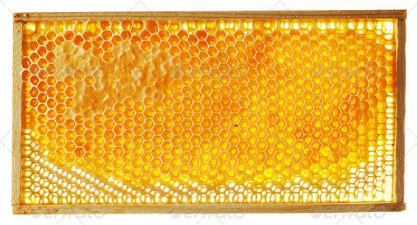 Honeycomb background - Stock Photo - Images