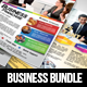 Business Flyer Bundle v1 - GraphicRiver Item for Sale