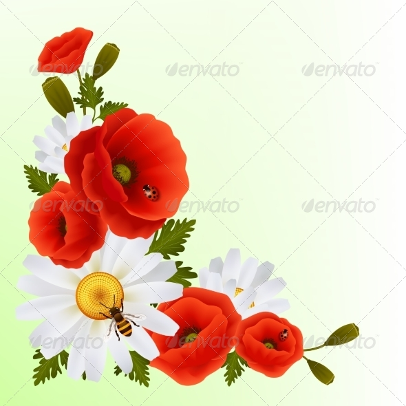 Poppy daisy background by macrovector graphicriver - Bat and poppy wallpaper ...