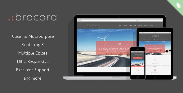Bracara – Responsive Drupal Theme