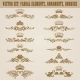 Set of Damask Ornaments - GraphicRiver Item for Sale