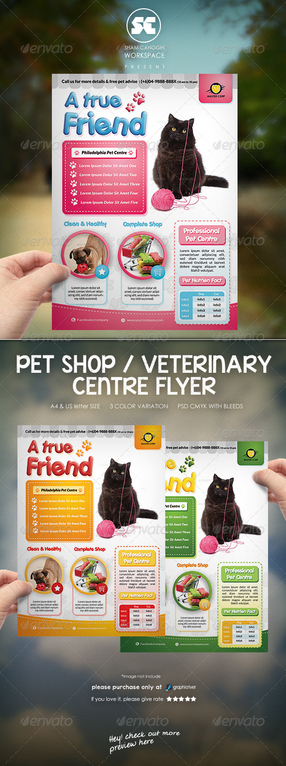 Pet Flyer Graphics Designs Templates From Graphicriver Page 3
