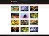 06 portfolio thumbnails.  thumbnail