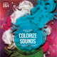 Colorize Sounds Flyer Template - GraphicRiver Item for Sale