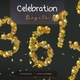Golden celebration Numbers - VideoHive Item for Sale