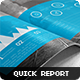 Quick Annual Report 2014 - GraphicRiver Item for Sale