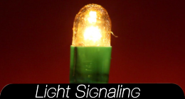 Light Signaling Collection