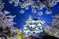 Hikone Castle - PhotoDune Item for Sale