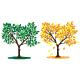 Tree Seasons - GraphicRiver Item for Sale