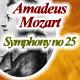 Mozart Symphony No.25