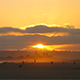Piercing Sunset at Beach - VideoHive Item for Sale