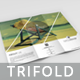 Travel multipurpose Trifold Brochure - GraphicRiver Item for Sale
