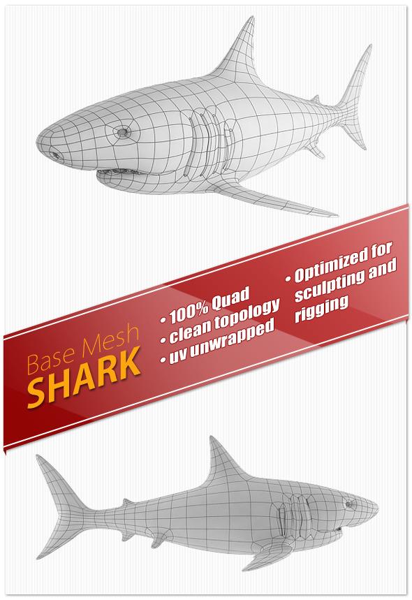 Shark Base Mesh - 3DOcean Item for Sale