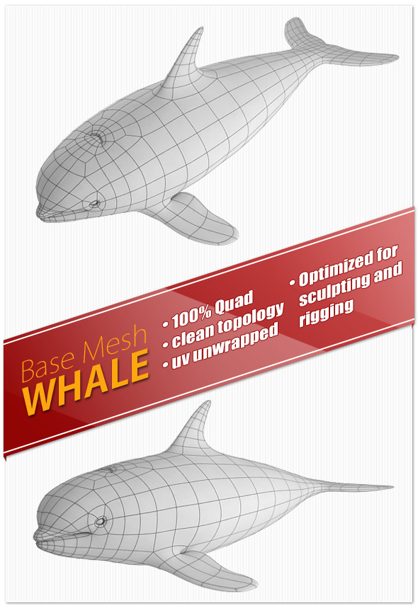 Whale Base Mesh - 3DOcean Item for Sale