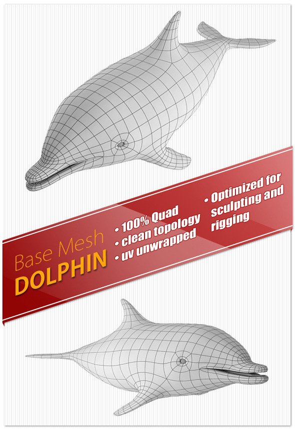 Dolphin Base Mesh - 3DOcean Item for Sale