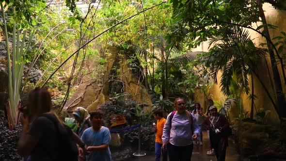 VideoHive Tourists Travel 20402332