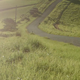 Green Fields with Grass Blowing - VideoHive Item for Sale