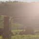 Green Fields with Gate - VideoHive Item for Sale